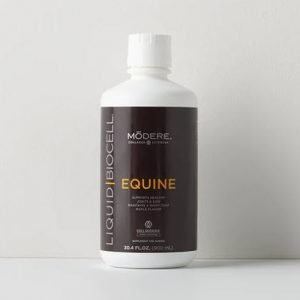 liquid collagen for horses